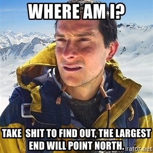 Bear Grylls - where am i? take  shit to find out, the largest end will point north.