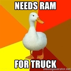 Technologically Impaired Duck - Needs ram for truck