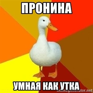 Technologically Impaired Duck - пронина умная как утка