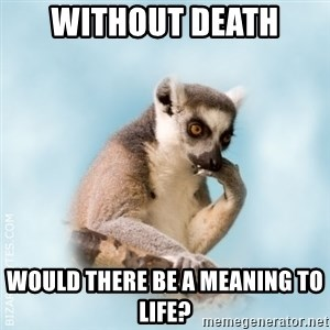Lamenting Lemur - wITHOUT DEATH wOULD THERE BE A MEANING TO LIFE?