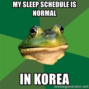 Foul Bachelor Frog - My sleep SCHEDULE is normal In korea
