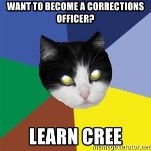 Winnipeg Cat - Want to become a correctionS Officer? Learn Cree