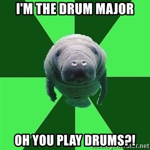 Marching Band Manatee - I'm the drum major oh you play drums?!