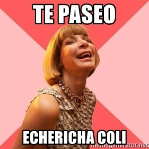 Amused Anna Wintour - te paseo echericha coli