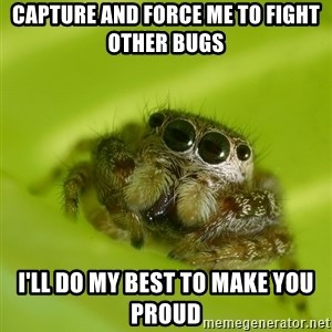 The Spider Bro - Capture and Force me to fight other bugs  I'll do my best to make you proud