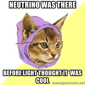 Hipster Kitty - neutrino was there before light thought it  was cool