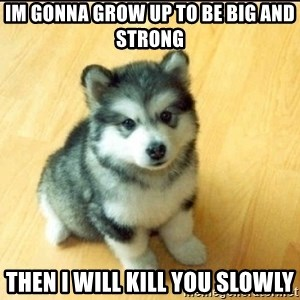 Baby Courage Wolf - im gonna grow up to be big and strong then i will kill you slowly