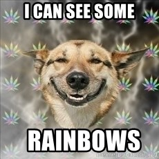 Original Stoner Dog - I can see some   rainbows