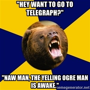 "Berkeley Student Bear - ""Hey want to go to telegraph?"" ""naw man, the yelling ogre man is awake."""