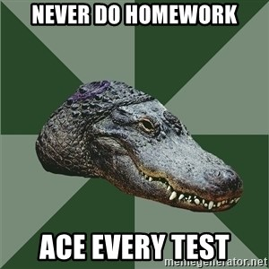 Aspie Alligator - never do homework ace every test