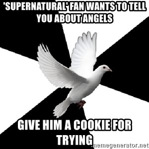 Religious Studies Dove - 'supernatural' fan wants to tell you about angels give him a cookie for trying