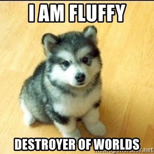 Baby Courage Wolf - I am fluffy Destroyer of worlds