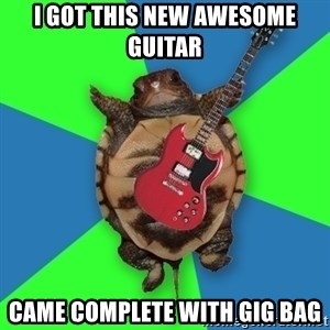 Aspiring Musician Turtle - I GOT THIS NEW AWESOME GUITAR CAME COMPLETE WITH GIG BAG