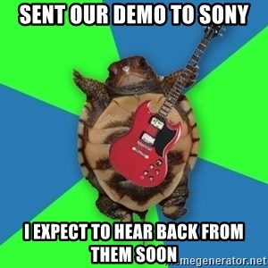 Aspiring Musician Turtle - SENT OUR DEMO TO SONY I EXPECT TO HEAR BACK FROM THEM SOON
