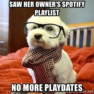 hipster dog - SAW HER OWNER'S SPOTIFY PLAYLIST NO MORE PLAYDATES