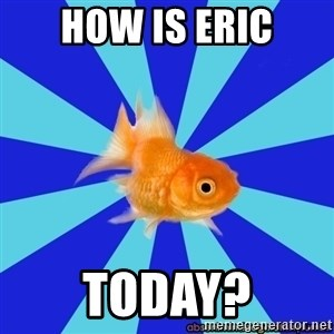 Absentminded Goldfish - how is eric today?