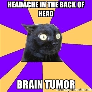 Anxiety Cat - headache in the back of head BRAIN TUMOR