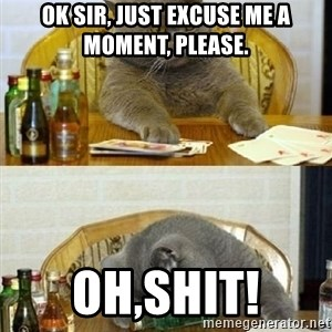 Poker Cat - ok sir, just excuse me a moment, please. oh,shit!