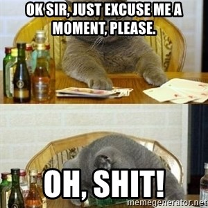 Poker Cat - ok sir, just excuse me a moment, please. oh, shit!