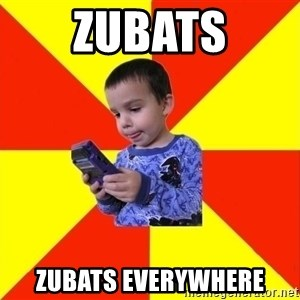 Pokemon Kid - zubats zubats everywhere