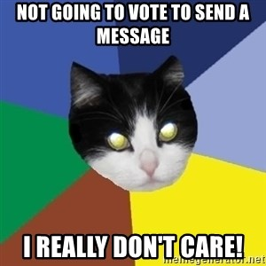 Winnipeg Cat - Not going to vote to send a message I really don't care!