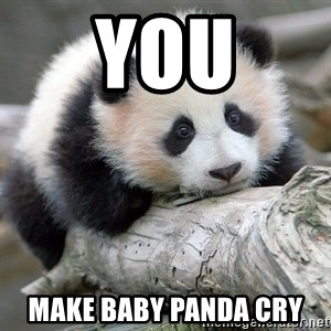 sad panda - You make baby panda cry