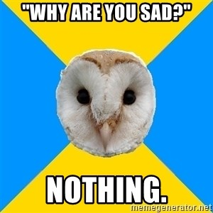 "Bipolar Owl - ""Why are you sad?"" nothing."