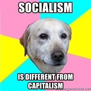 Politically Neutral Dog - socialism is different from capitalism