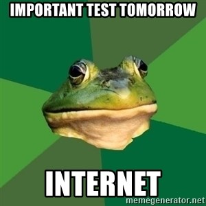 Foul Bachelor Frog - Important test tomorrow internet