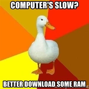Technologically Impaired Duck - computer's slow? Better download some ram