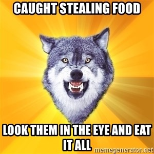 Courage Wolf - caught stealing food look them in the eye and eat it all