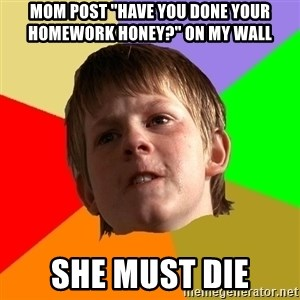 """Angry School Boy - mom post """"have you done your homework honey?"""" on my wall SHE MUST DIE"""