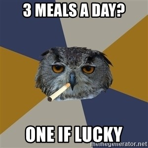 Art Student Owl - 3 meals a day? one if lucky