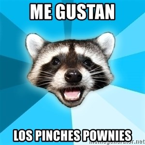 Lame Pun Coon - me gustan los pinches pownies