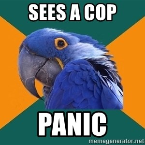 Paranoid Parrot - sees a cop panic