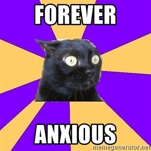 Anxiety Cat - forever anxious