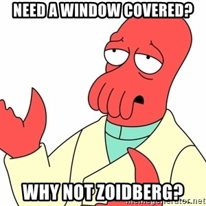 Why not zoidberg? - Need a window covered? why not zoidberg?