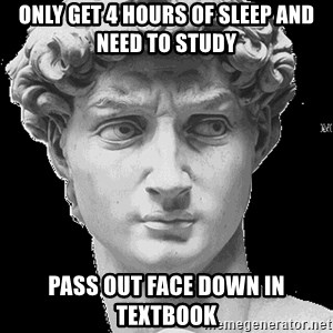 David Art History - only Get 4 hours of sleep and need to study pass out face down in textbook