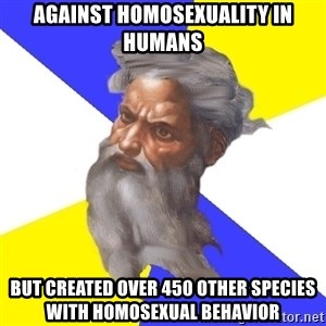 God - Against Homosexuality in Humans But created over 450 other species with homosexual behavior