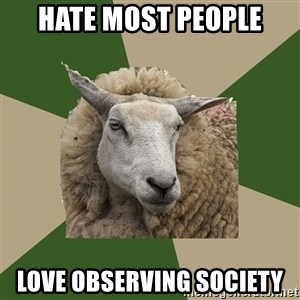 Sociology Student Sheep - Hate most people love observing society