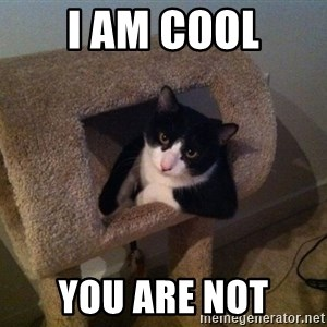 cool cat - I am cool you are not