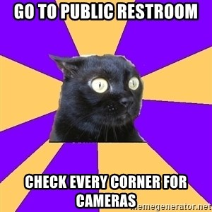 Anxiety Cat - go to public restroom check every corner for cameras