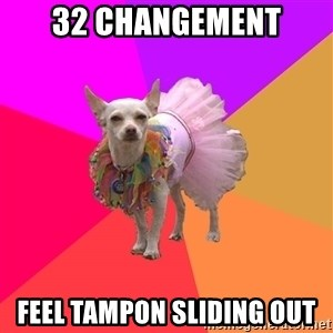 Ballet Chihuahua - 32 changement feel tampon sliding out