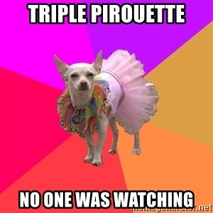 Ballet Chihuahua - TRIPLE pIROUETTE nO ONE WAS WATCHING