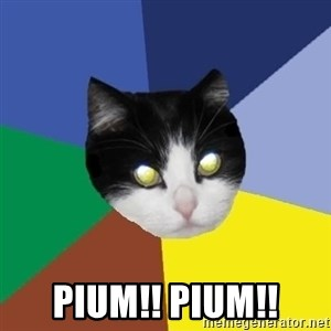 Winnipeg Cat - pium!! pium!!