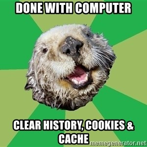 Ocd Otter - done with computer clear history, cookies & Cache