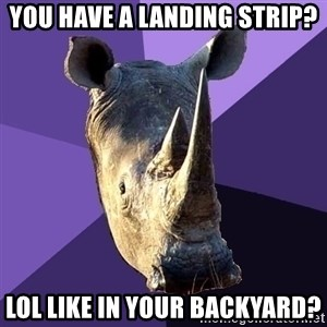 Sexually Oblivious Rhino - you have a landing strip? lol like in your backyard?