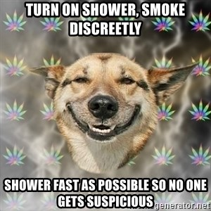 Stoner Dog - Turn on shower, smoke discreetly  shower fast as possible so no one gets suspicious
