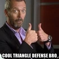 cool story bro house - Cool TriAngle Defense Bro