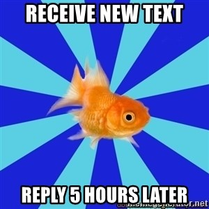Absentminded Goldfish - receive new text reply 5 hours later